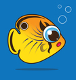 butterflyfish cartoon vector image vector image