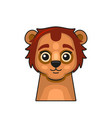 cute lion face cartoon style on white background vector image