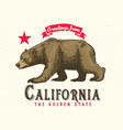 greeting from california with brown bear vector image vector image