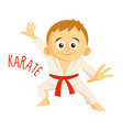 kinds of sports athlete karate vector image