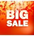 Sale message witn percent vector image