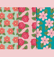 set flowers pants with petals and leaves vector image vector image