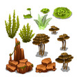 the set of algae and underwater rocks isolated on vector image vector image