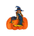Witch and cat sitting on pumpkin