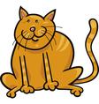 yellow sitting cat vector image vector image