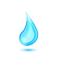 Water drop isolated on white background vector image