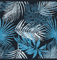 abstract tropical palm leaves silhouette vector image
