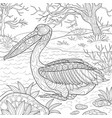 adult coloring bookpage a cute pelican on the vector image vector image