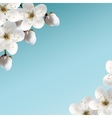 Cherry blossoms vector | Price: 1 Credit (USD $1)