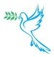 dove peace vector image vector image