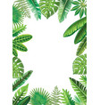 frame from tropical leaves vector image vector image