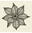 Hand drawn sketch flower vector image vector image