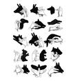 Hand shadow animals vector image vector image