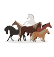 Horse Conceptual Flat Style Web Banner vector image vector image