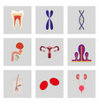 Icons set in flat style human organs cell