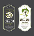 Set labels for olive oils elegant design