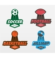 Set of Soccer Football basketball billiards vector image