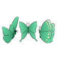 set of three beautiful butterfly spring vector image