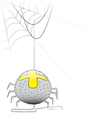 spider with a web vector image