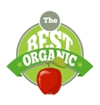 The best organic fruit logo template vector image vector image