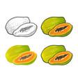 whole and half papaya color vintage vector image vector image