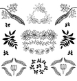 Hand drawn set of plants flowers vector image