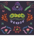 Collection of plants flowers and leaves vector image