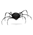 black cartoon spider vector image vector image
