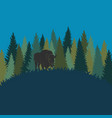forest landscape with bison forest of fir trees vector image