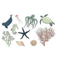 hand drawn sea life set vector image