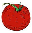 isolated tomato vector image