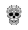 mexican sugar skull with floral pattern day of vector image vector image