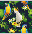 seamless pattern of parrots cockatoo on the tropic vector image
