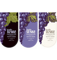 set wine labels with grapes vector image