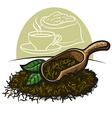 Dry green tea leaves vector image