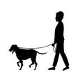 pictogram man hat walking with dog pet vector image