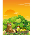 A bear and a turtle at the forest vector image vector image