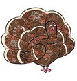 hand drawing turkey vector image vector image