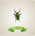realistic beetle element of vector image