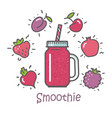 smoothie cocktail and ingredients vector image vector image