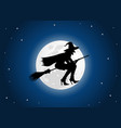 witch moon vector image vector image