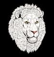 beautiful lion artwork detailedafrican predator vector image