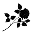 Rose flower silhouettes vector image