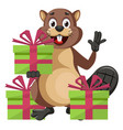 beaver with presents on white background vector image vector image