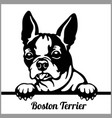 boston terrier - peeking dogs - - breed face head vector image vector image