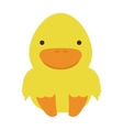 cute chicken isolated icon vector image