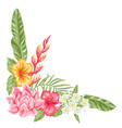 decorative element with tropical flowers and vector image