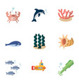 Flat icon nature set of alga playful fish