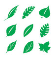 green leaves design element vector image