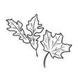 set of autumn fallen leaves vector image vector image